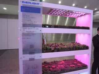 植物栽培用ライト